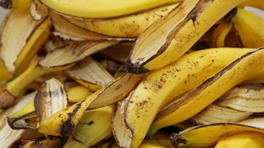 casca da banana usos