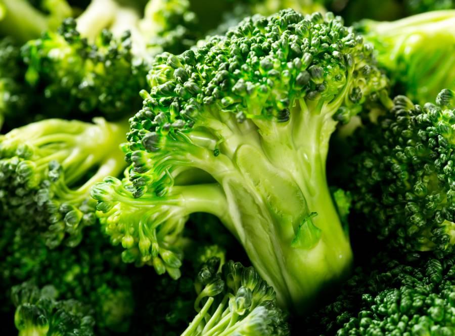 brocolis vegetal